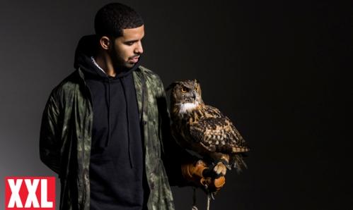 Drake-With-Owl